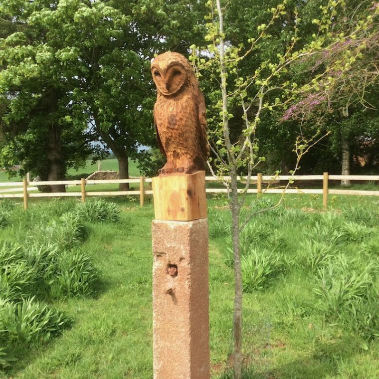 Barny the owl sitting on his post
